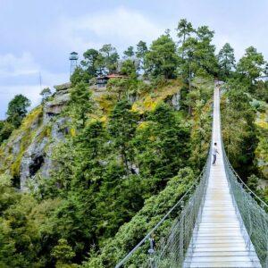 puente colgante cuajimoloyas