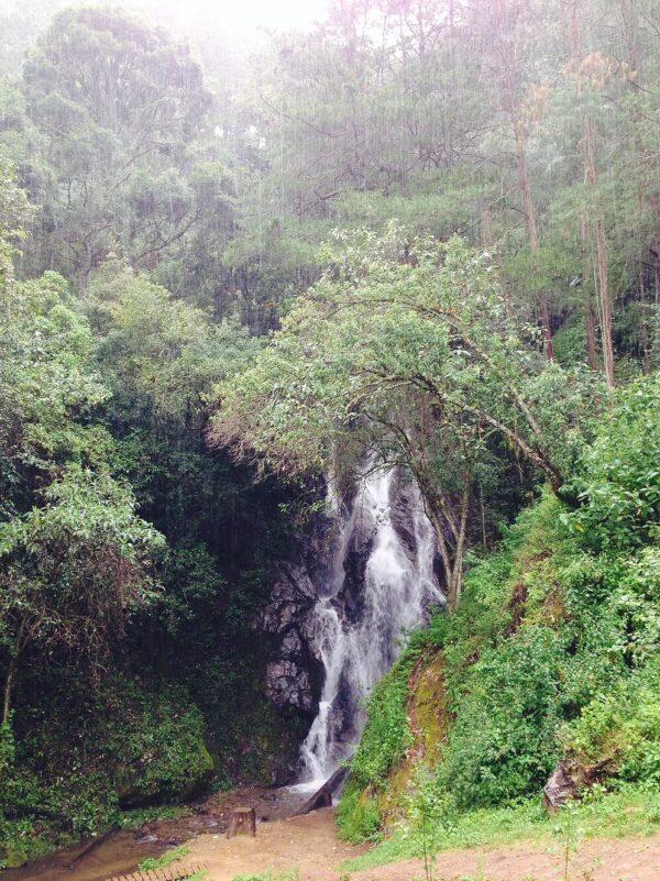 caida cascada las guacamayas